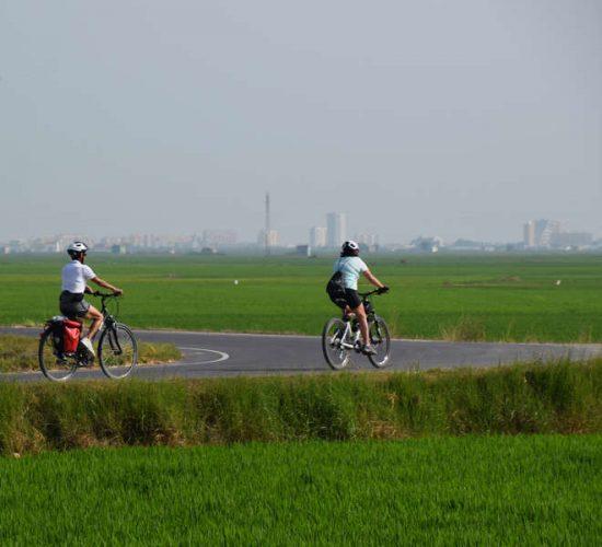 Albufera en bicicleta viaje organizado largo