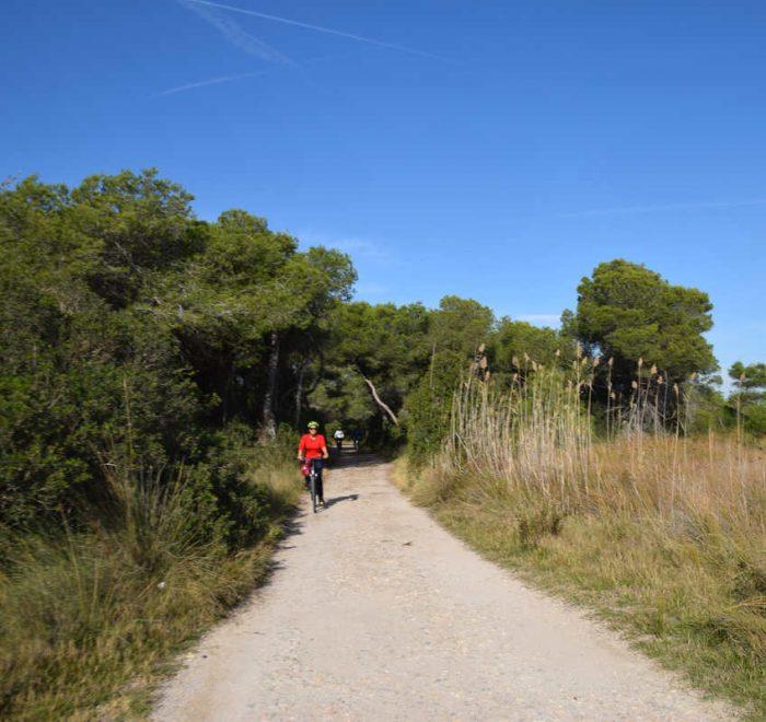 afueras de Valencia en bicicleta