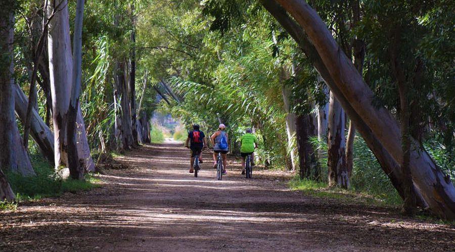 organizar un viaje en bicicleta