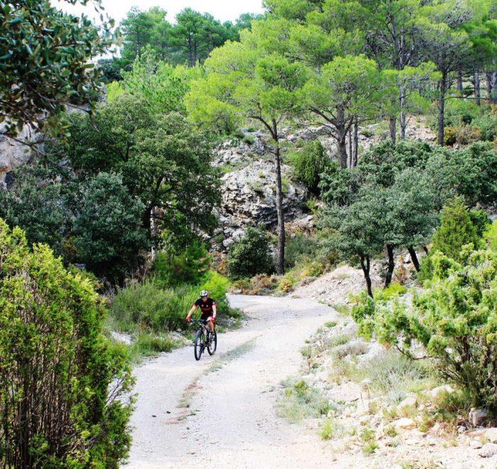 BTT castellón bicicleta de montaña