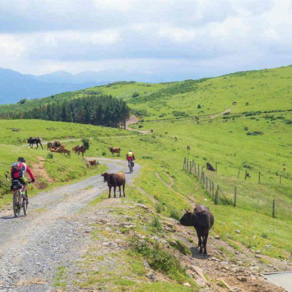 vía verde montes del hierro Cicloturismo por Vizcaya en grupo kolotrip