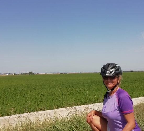 arrozales de valencia en bici
