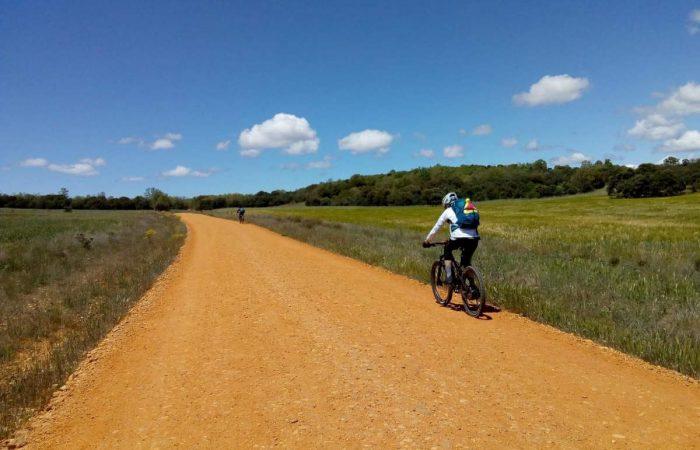 Camino francés en bici kolotrip