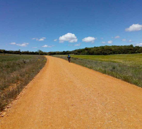 roncesvalles en bici