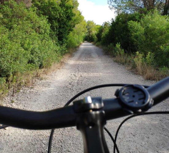 valencia en bicicleta