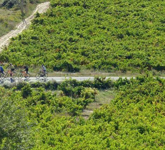 La Rioja en bicicleta cicloturismo viaje organizado (3)