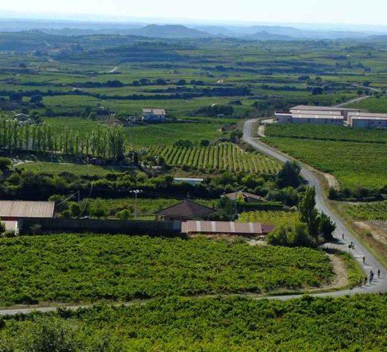 La Rioja en bicicleta cicloturismo viaje organizado (4)