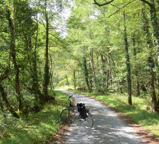 Vía Verde del Plazaola en bicicleta