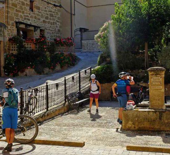 viñedos de La Rioja en bici kolotrip