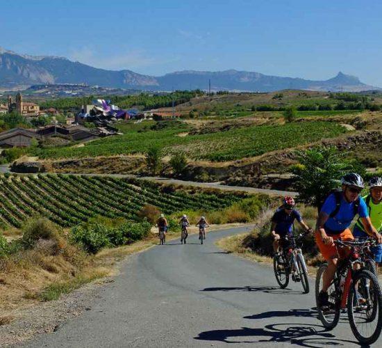 viñedos de La Rioja en bici kolotrip organizado viaje