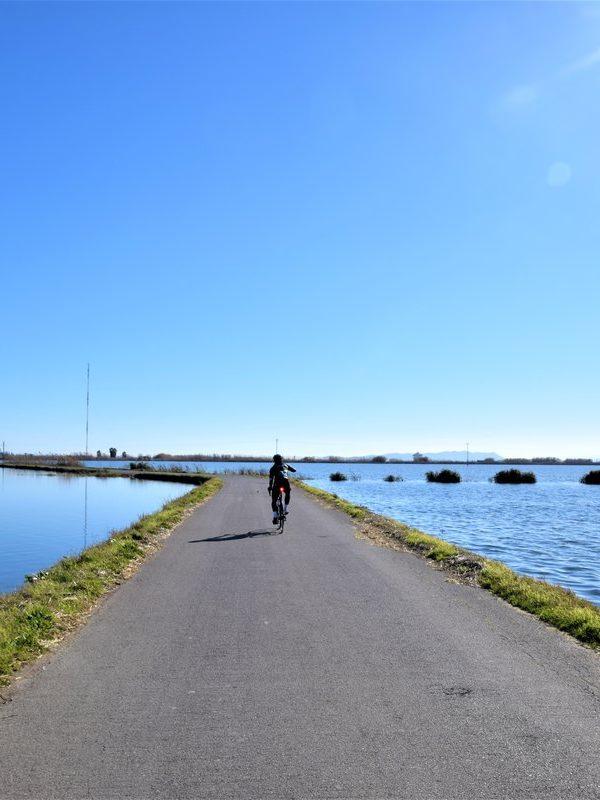 valencia en bicicleta de carretera kolotrip