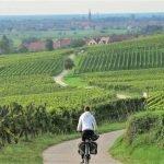 Alsacia en bicicleta