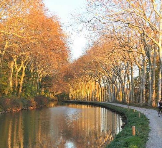 Viaje en bicicleta por el Canal du Midi Kolotrip