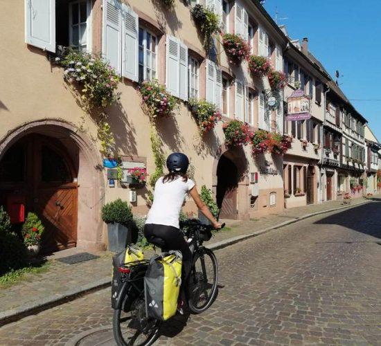 francia y viñedos en bici